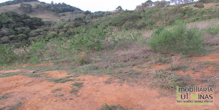 Terreno 9 Alqueires em Camanducaia Cod 662 (8)